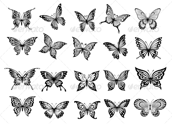 GraphicRiver Set of Twenty Butterflies 8469882
