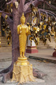Buddhist temple in the south of Thailand - PhotoDune Item for Sale