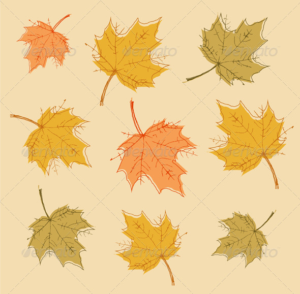 GraphicRiver Autumn Background with Colorful Leaves 8475130