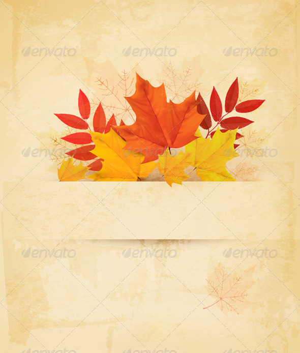 GraphicRiver Autumn Background with Leaves 8475348