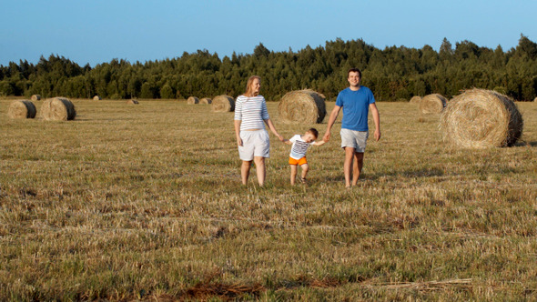 VideoHive Family Walking Holding Hands In The Field 8486699