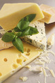 Various types of cheese on stainless - PhotoDune Item for Sale