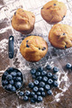 Blueberry muffins on baking rack - PhotoDune Item for Sale
