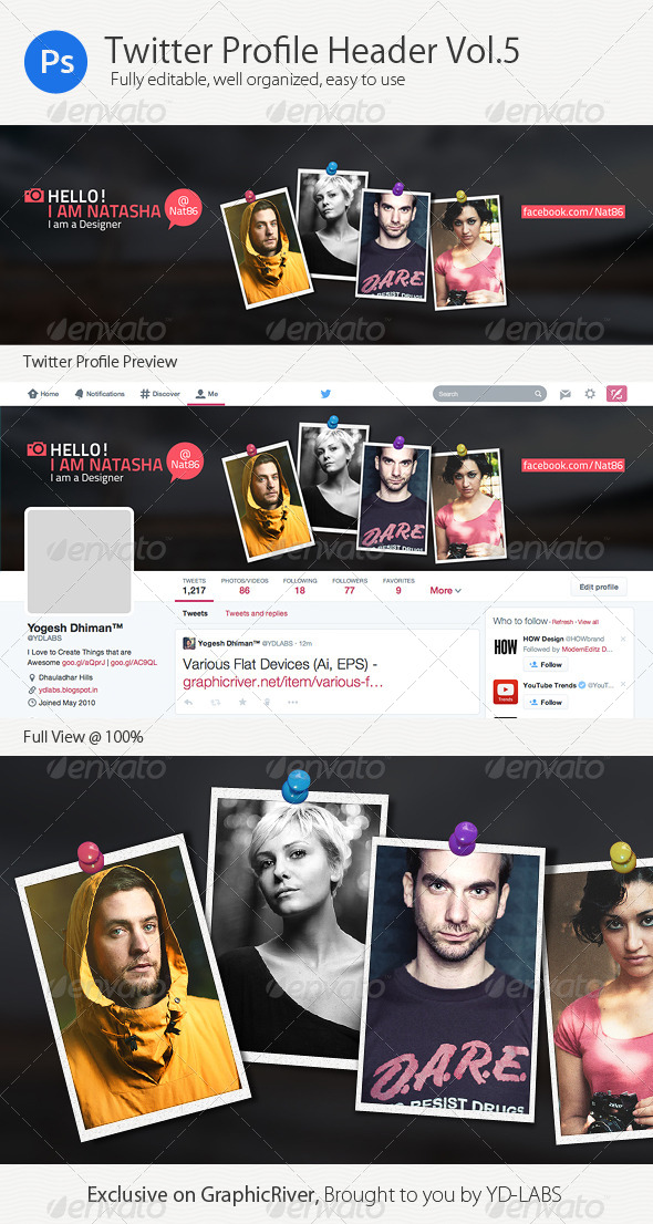 GraphicRiver Twitter Profile Header V5 8494975