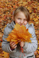 little girl with autumn leaves - PhotoDune Item for Sale
