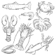 Vector Set of Sketch Sea Food - GraphicRiver Item for Sale