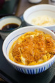 Deep fried pork with egg and rice - PhotoDune Item for Sale