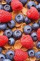 Multigrain muesli with berries - PhotoDune Item for Sale
