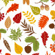 Autumn forest set - GraphicRiver Item for Sale