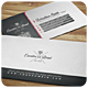 Executive Brand - Business Card [Vol.8] - GraphicRiver Item for Sale