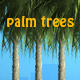 Palm Trees - GraphicRiver Item for Sale