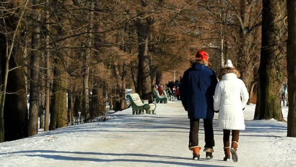 Couple Walking In The Park In Winter