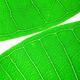 Green Leaf 8 - PhotoDune Item for Sale