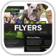 Care Pets Docs Veterinary Flyers - GraphicRiver Item for Sale