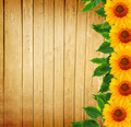 Wooden Fence, Green Leaves and Sunflowers - PhotoDune Item for Sale