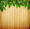 Wooden Fence and Green Leaves - PhotoDune Item for Sale