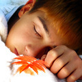 Boy sleeping outdoor - PhotoDune Item for Sale