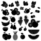 Black and White Fruits and Berries - GraphicRiver Item for Sale