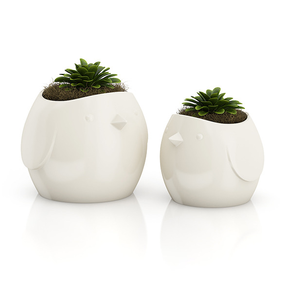 3DOcean Two Plants in Bird Pots 8514688