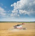 Harvesting - PhotoDune Item for Sale