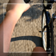 Driving By Bicycle - VideoHive Item for Sale
