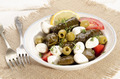 stuffed grape leaves and mozzarella balls - PhotoDune Item for Sale