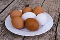 Chicken eggs on a plate - PhotoDune Item for Sale