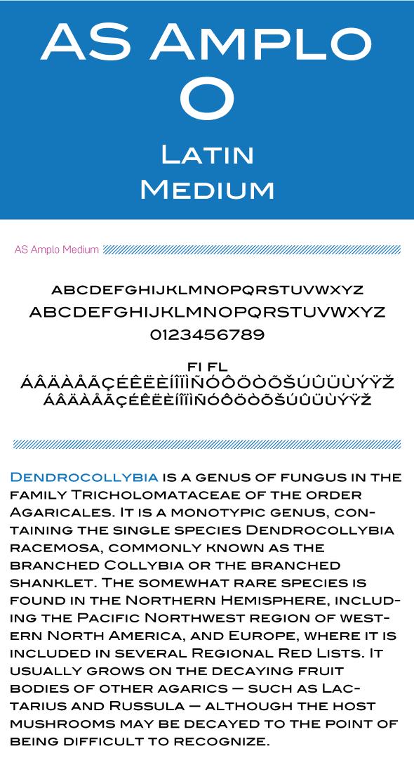 AS Amplo - Sans-Serif Fonts