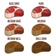 Degrees of Steak Doneness Set - GraphicRiver Item for Sale