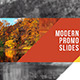 Modern Promo Slides - VideoHive Item for Sale