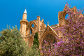 St. Nicholas Cathedral, formerly Lala Mustafa Mosque. Famagusta, Cyprus - PhotoDune Item for Sale