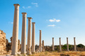 Ancient Salamis Ruins. Famagusta, Cyprus - PhotoDune Item for Sale