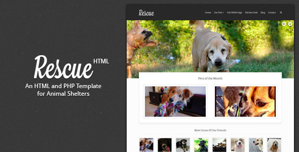 Rescue Animal Shelter HTML Template