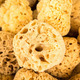 Collection of sea sponges in Florida - PhotoDune Item for Sale