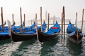 Gondolas in Venice Italy - PhotoDune Item for Sale