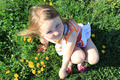 little girl lying on the grass with dandelions - PhotoDune Item for Sale