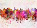 Honolulu skyline in watercolor background - PhotoDune Item for Sale