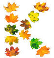 Letter K composed of autumn maple leafs - PhotoDune Item for Sale