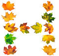Letter H composed of autumn maple leafs - PhotoDune Item for Sale