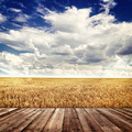 Wood floor and agricultural fields  - PhotoDune Item for Sale
