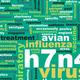 H7N4 - PhotoDune Item for Sale