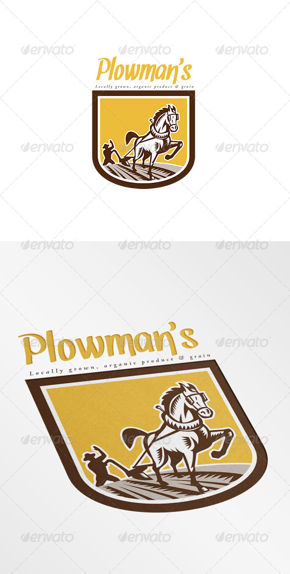 GraphicRiver Plowman s Local Organic Produce Logo 8543796