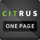 Citrus - One Page Parallax Portfolio - ThemeForest Item for Sale