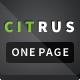 Citrus - One Page Parallax Portfolio - Corporate Site Templates