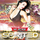Spirited Party Flyer Template