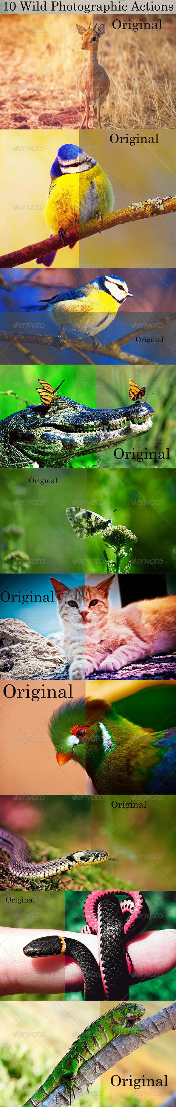 GraphicRiver 10 Wild Photographic Actions 8550516