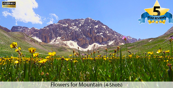 Flowers for Mountain