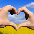 Love shape hands - heart on yellow field and blue sky - PhotoDune Item for Sale