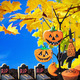 Halloween cookies hanging on a tree - PhotoDune Item for Sale