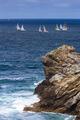 Regatta - PhotoDune Item for Sale